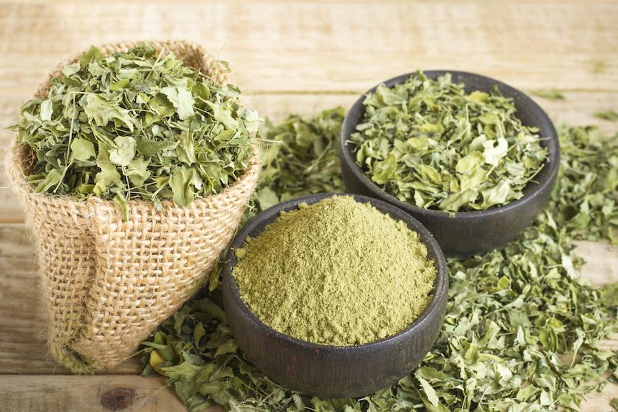 Connaissez-vous le moringa, cette plante aux nombreuses vertus ...