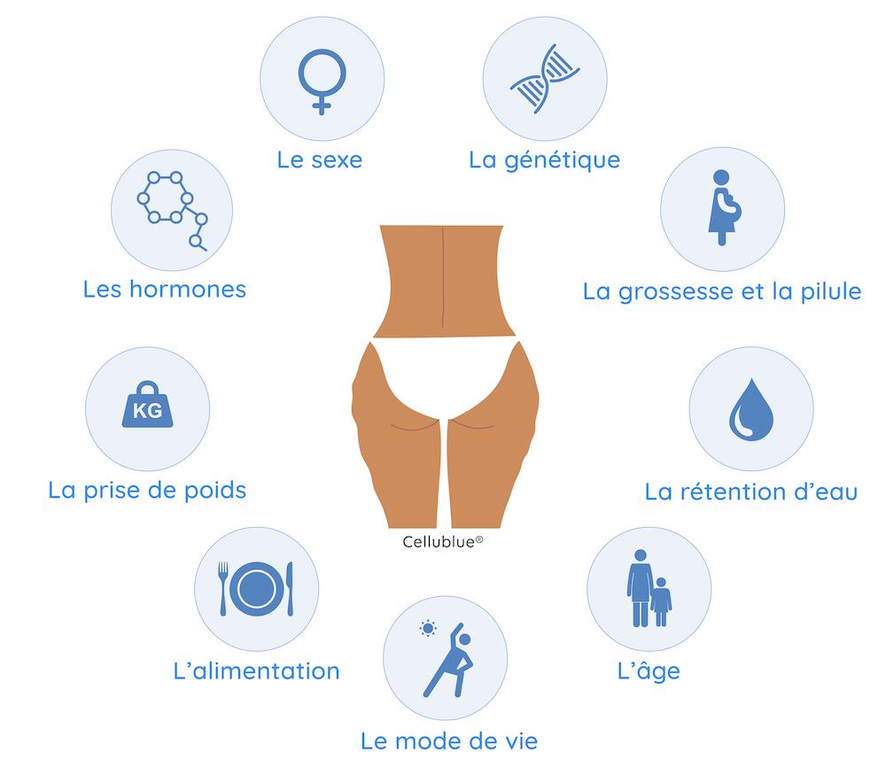 Quelles Sont Les Vraies Causes De La Cellulite Cellublue