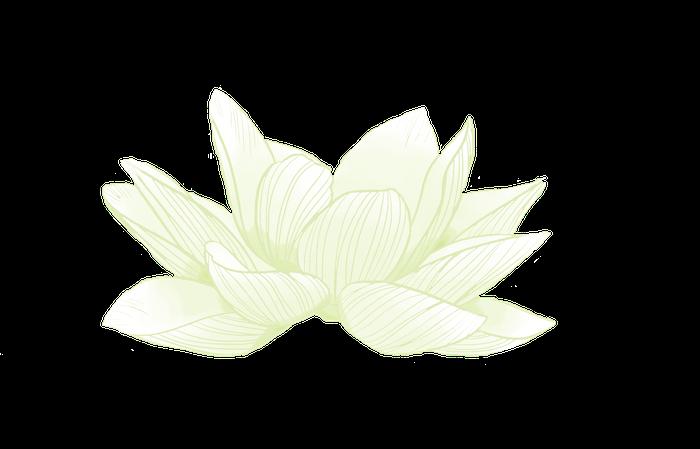 dessin lotus sacré fermé